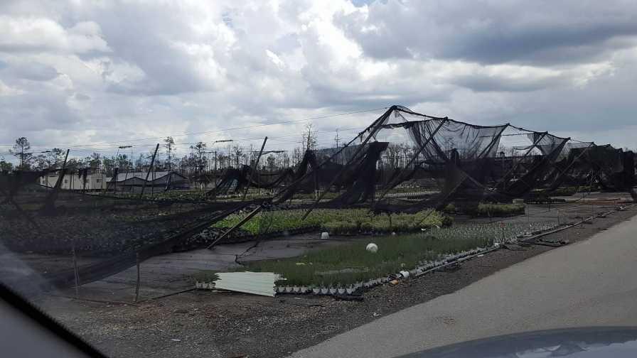 Hurricane Irma Damage disaster planning
