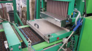 Maximize Your  Labor Efficiency When Sticking Plant Cuttings