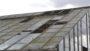 GVZ Glasshouses