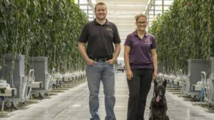 NatureFresh Pest Management Strategy with Dogs