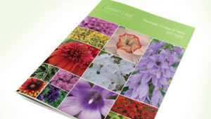 Green Leaf Plants New Catalog is Now Available