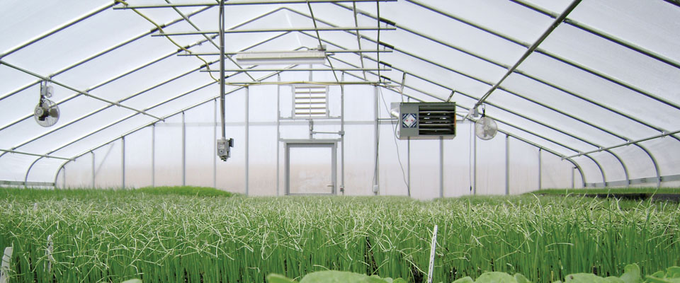 Superb Tips On Adding Heat To Your Greenhouse For The Winter Home Interior And Landscaping Mentranervesignezvosmurscom