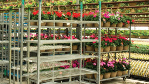 How RFID Technology Can Help With Plant Cart Tracking
