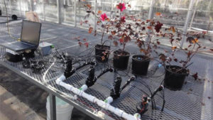 Low-Cost-Build-Your-Own-Irrigation-Sensors-feature