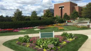 2017 Michigan State University Field Trials Results
