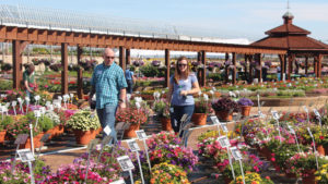 Metrolina Shows Off Its Summer Best During Southern Garden Tour
