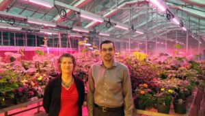 Michigan State Partners With Philips Lighting to Modernize On-Campus Greenhouses