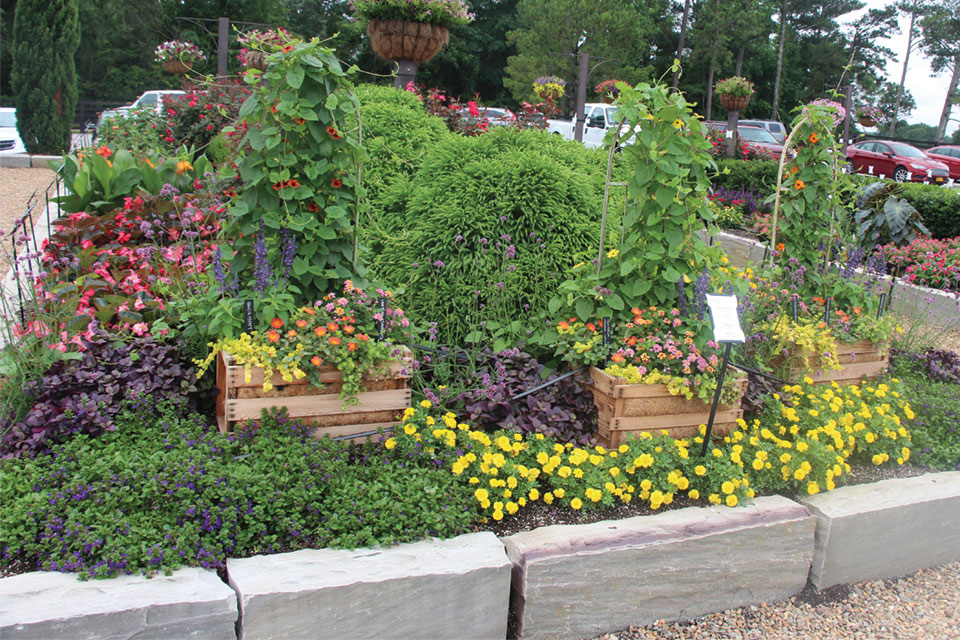 Youngs-Plant-Farm-Themed-Plant-Beds