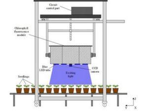 Applied-Optics-Plant-Stress