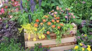 How to Produce Stunning Combination Containers