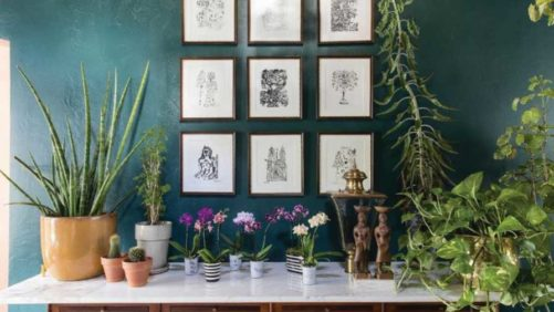 Why Millennials Can't Get Their Fill of Foliage Plants and Tropicals