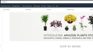 The Latest on Amazon's Online Plant Store
