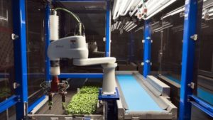 ISO Group Debuting New Cutting and Transplanting Machine at IPM Essen