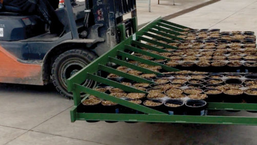 Automation Never Stops, Even for the Biggest Growers