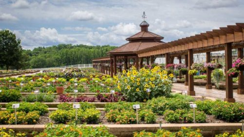 2018 Southern Garden Tour Includes Visits to Young's Plant Farm, the University of Georgia, and Metrolina Greenhouses