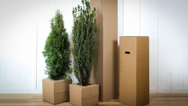 Nature-Hills-Nursery-Plant-Shipping-feature