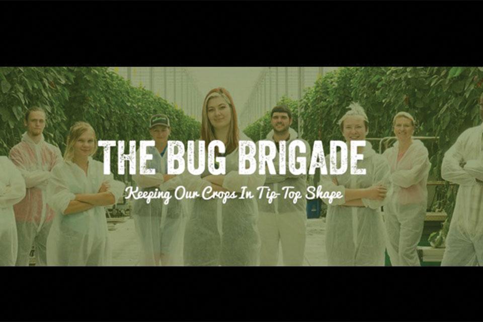 NatureFresh-Farms-Bug-Brigade