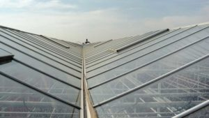 HortAmericas Offering New Shading Products to Help With Greenhouse Light Management