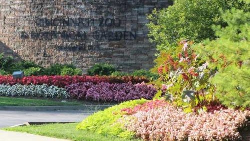 2017 Cincinnati Zoo & Botanical Garden Field Trials Results