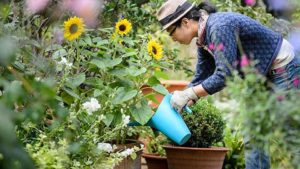 8 Trends Influencing the Garden World in 2018