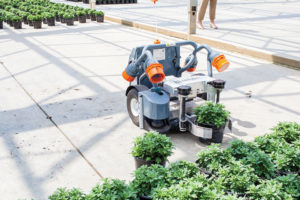 Harvest-Automation-Robot-at-Green-Circle-Growers