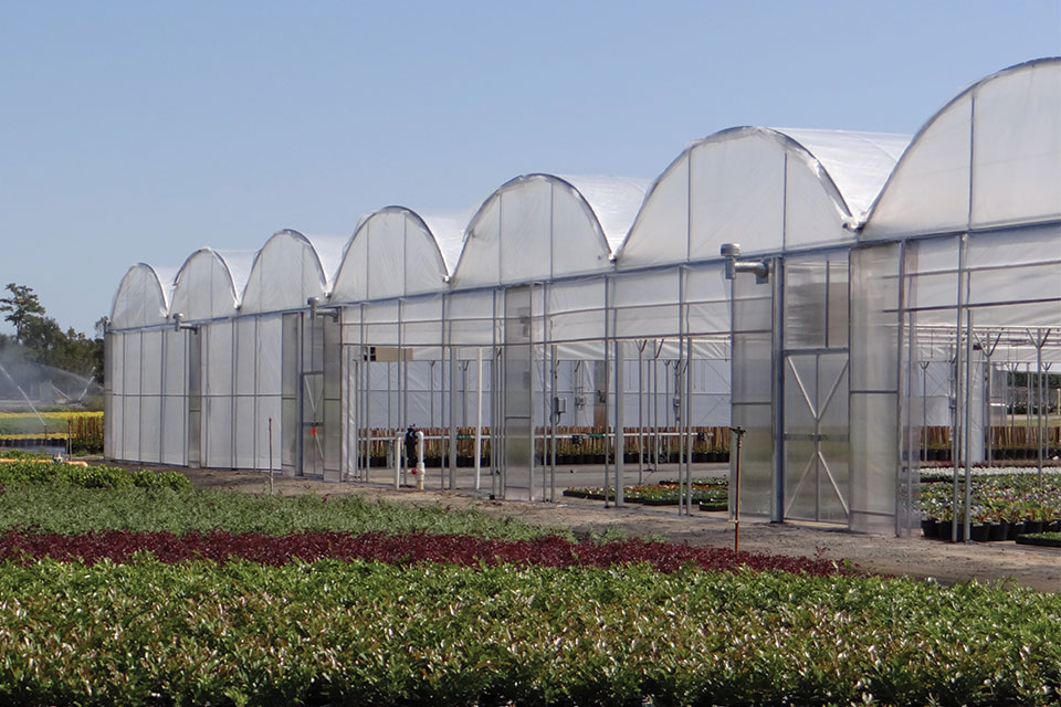 Classic-The-Greenhouse-Company-of-South-Carolina greenhouse structures