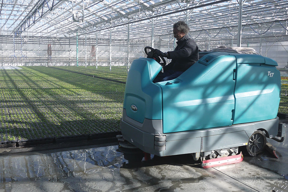 Cleaning-the-greenhouse-floors