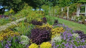 Longwood Garden's Captivating Landscape Combinations — From the Public's Perspective