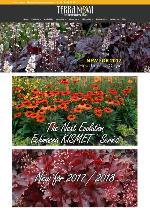 Terra-Nova-Nurseries-Home-Page