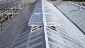 How to Decide Whether to Build a New Greenhouse Structure or Retrofit an Existing One