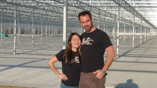 What Sedan Floral Learned From its Recent Greenhouse Expansion
