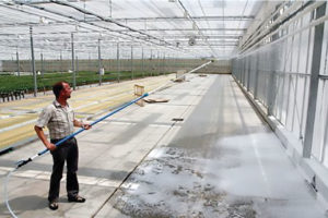 foam-wash-greenhouse