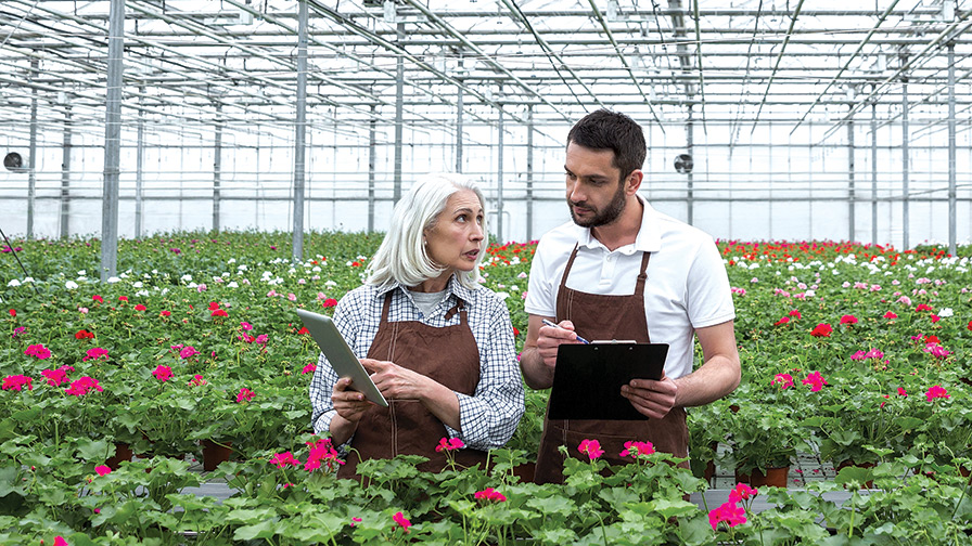 Employees-in-a-Greenhouse