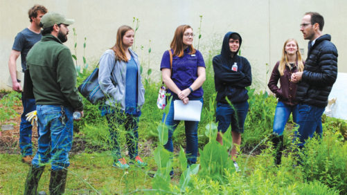 6 Ways to Turn College Students Into Plant Lovers