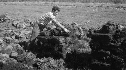 Lambert Peat Moss Celebrates 90 Years of Premium Peat Production