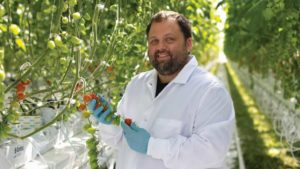 Mastronardi Produce Sets Record With Latest Greenhouse Expansion in New York