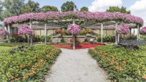 Pleasant View Gardens, D.S. Cole Growers to Host Open House in August