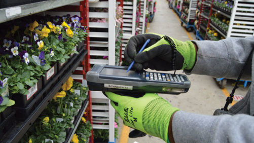 New Software Systems Help Greenhouse Growers Manage Data and Streamline Operations