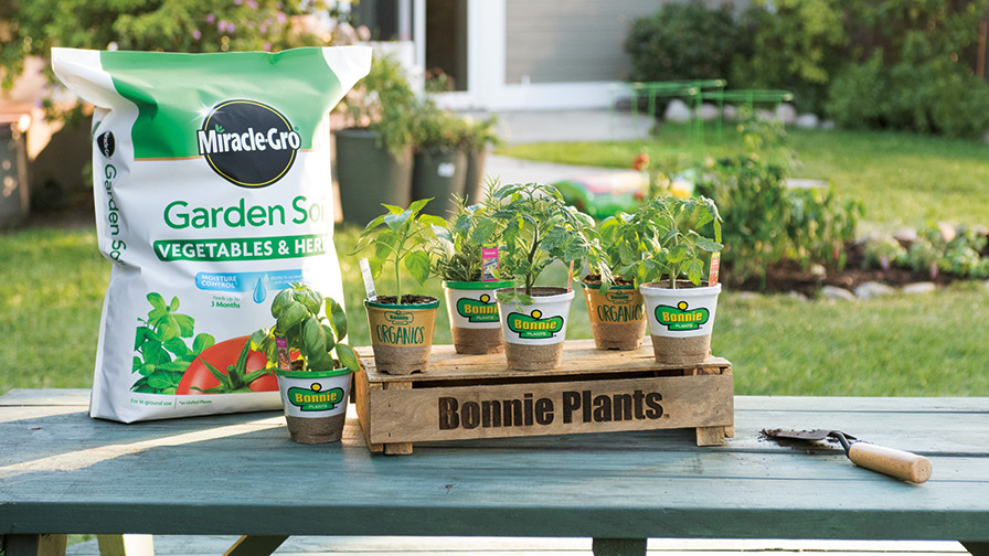 3x Harvest Guarantee from Scotts and Bonnie Plants feature