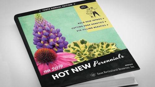 New Perennials Booklet Includes Proven Varieties