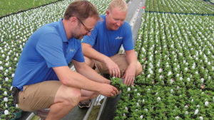 How to Communicate Quality Standards to Contract Greenhouse Growers