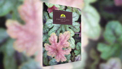 Emerald Coast Growers Releases New Variety Resource Guide