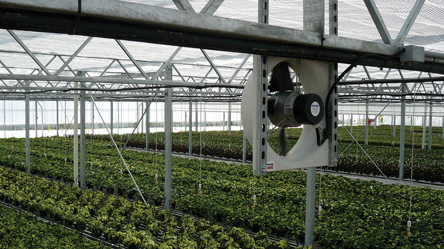 Greenhouse-Momentum-Based-Fans air flow