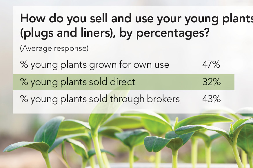 How-Young-Plants-are-Sold-2018