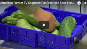 """American Farmer"" TV Series Will Shine Light on PanAmerican Seed"