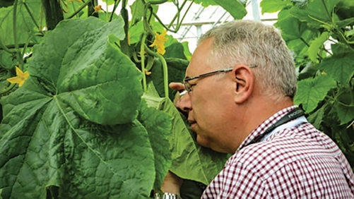 Greenhouse Growers Invited to Get the Lowdown on Biocontrols