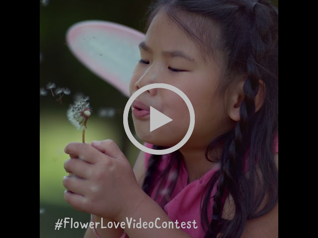 AFE FlowerLoveVideoContest