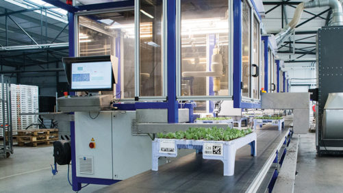 An In-Depth Look at the ISO Cutting Planter