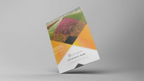 LumiGrow Shines Light on Ornamentals in New Grower Guide