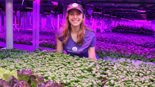 Nation's First Fully Automated Vertical Farm Breaks Ground in Ohio